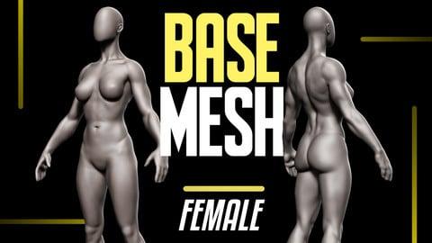 Basemesh Female