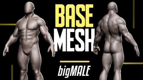 Basemesh Big Male