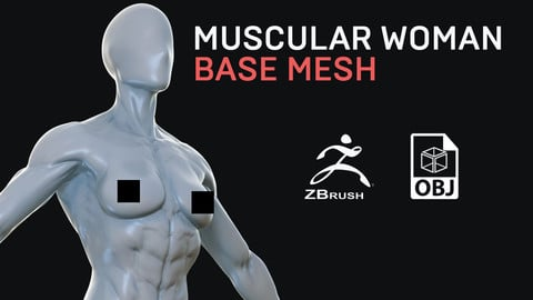 Muscular Woman - Base Mesh