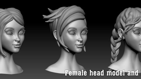 Female head model and hairstyle Zbrush