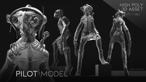 "the ""Pilot"" model"