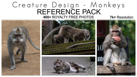 Creature Design Reference Pack - Monkeys