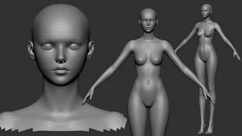 Free Female 2020 Base Mesh