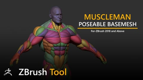 Muscleman Posable Basemesh