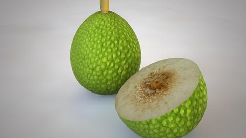Breadfruit 3D Model