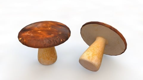 Mushrooms brown 3D Model