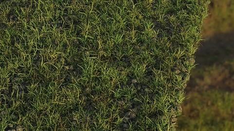 Grass & Nature Pack
