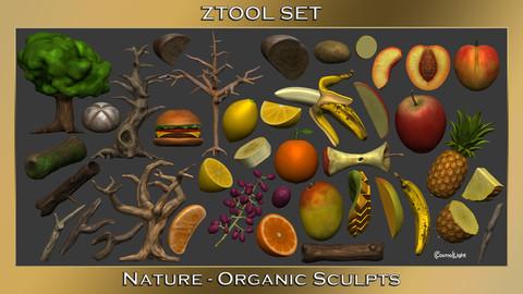 ZTool Set: Nature | Organic Pack: A