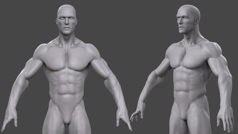 Male BaseMesh