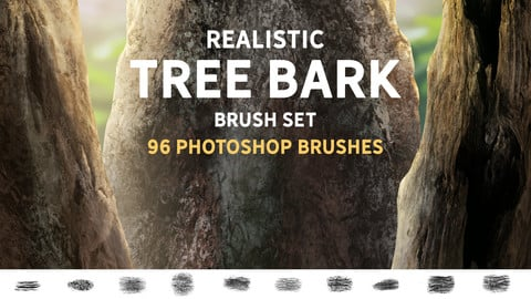 Realistic Tree bark brush set