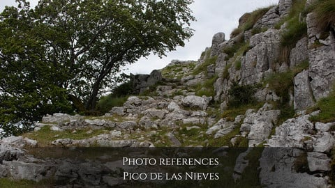Photo reference Landscapes: Pico de las Nieves