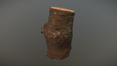Photoscanned Mossy Log