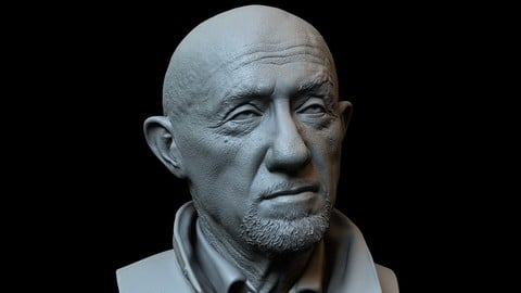 Mike Ehrmantraut (Jonathan Banks) from Breaking Bad/Better Call Saul - 3d printable bust
