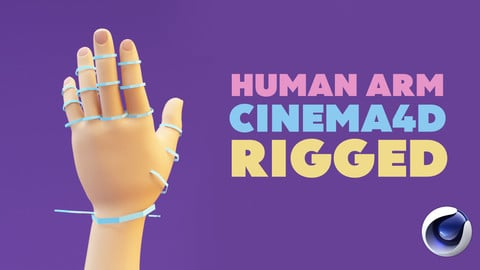 Human Stylize Arm - Cinema 4D - Rigged