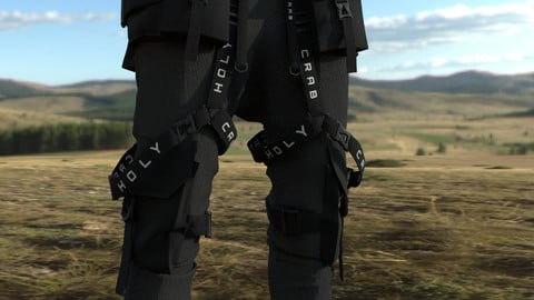 HOLY CRAB techwear pants