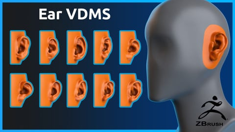 Zbrush - Ear- VDM Brushes