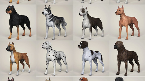 Realistic 3D Dog Collection
