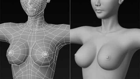 3D Female Base Mesh