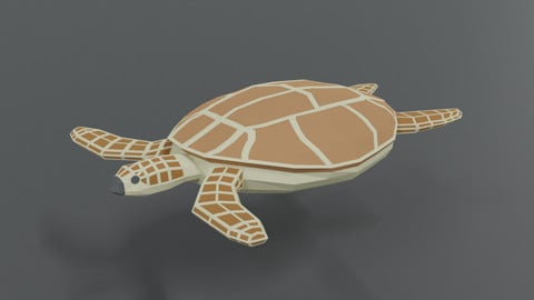 Low Poly Cartoon Loggerhead Sea Turtle