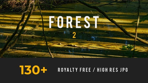 Forest 2, Environment Pack
