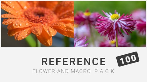 Reference: Flower and Macro Pack 100