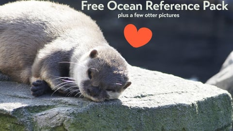 Free Ocean Reference Pack