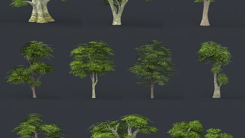 Low Poly 10 Tree Collection