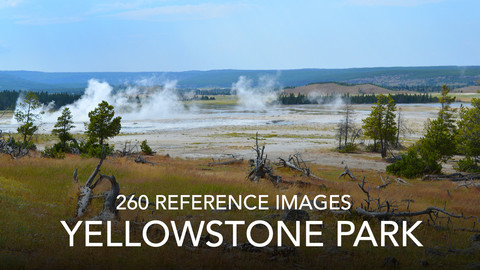 Yellowstone Photo Reference Pack