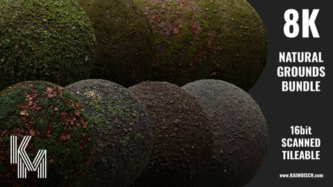 Natural Ground Bundle | 8 Scanned 8K Materials