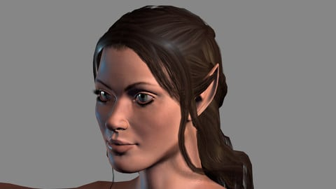 Animated Naked Elf Woman-Rigged 3d game character Low-poly 3D model