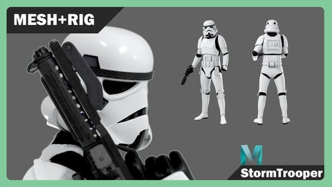 StormTrooper Rigged Textured Model 3D model