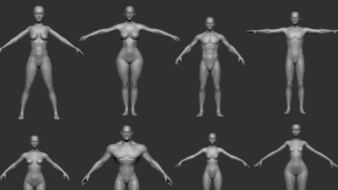 basemesh body collection v1