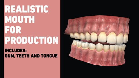 Teeth for production - With Gum, teeth and tongue / Game Ready