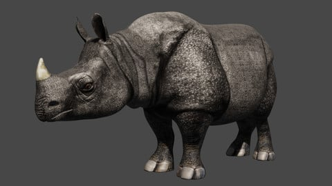 Rhino rigged animated
