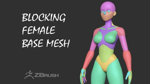 Blocking Female Basemesh