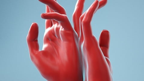 Back to Back Realistic Hand