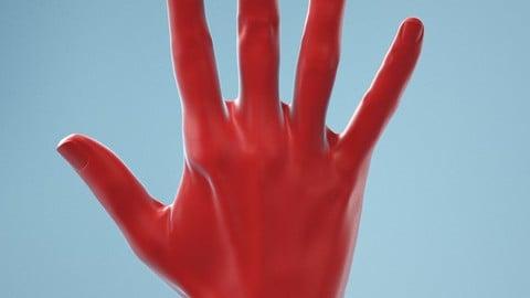 Standard Pose Realistic Hand