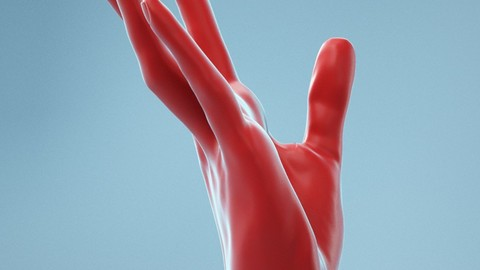 Stretched Backwards Realistic Hand