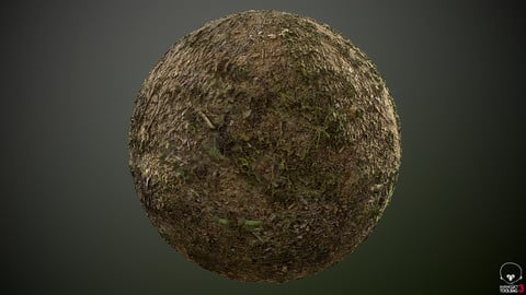 Grass Type 01 PBR Material 2K