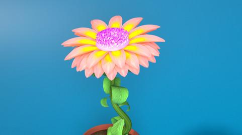 Daisy Flower Animated
