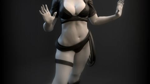 CatWoman STL File For 3D Printer