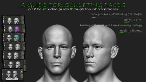 A guide for sculpting faces