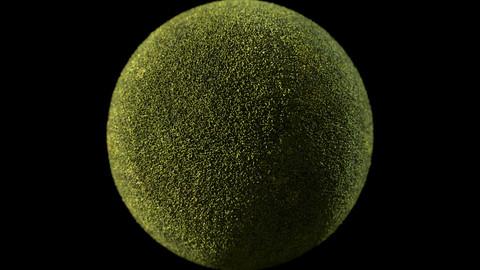 216. Moss#04
