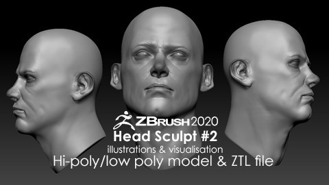 Head Sculpt #2 - Anatomy Study