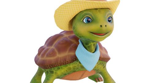 Turtle cowboy 3d model