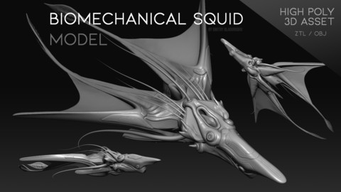 """Biomechanical Squid"" model"