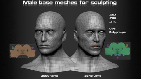 Head - Basemesh + Mouthbag version