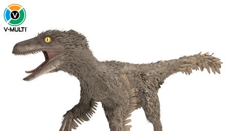 Velociraptor Rigged Feathered
