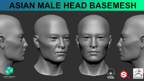 Asian Male Head BaseMesh