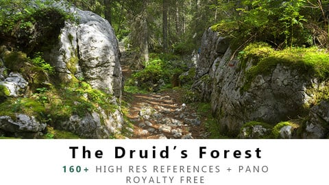 The Druid's Forest Texture PACK